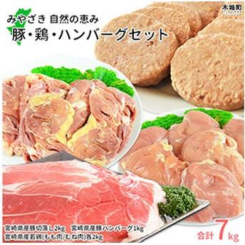 sn <みやざき 自然の恵み 豚・鶏・ハンバーグセット>2019年8月末迄に順次出荷
