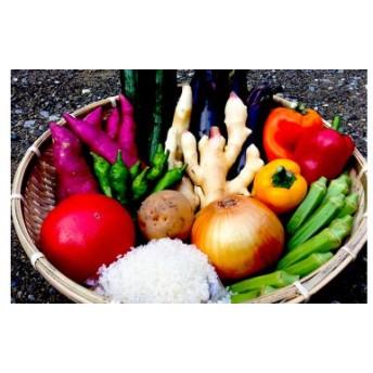 南国土佐の新鮮お野菜とお米セット