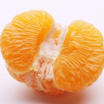 <2月発送>伊予柑(いよかん)3.5kg(伊予柑)
