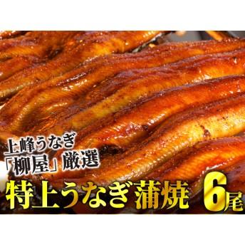 上峰鰻 鰻蒲焼 6尾(6尾 ※1尾あたり…約100g~120g前後)