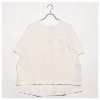 イーハイフンワールドギャラリーアウトレット E hyphen world gallery outlet カリフォルニアコットン Tシャツ (オフホワイ