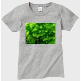 『ヒノキゴケ#1シンプル』レディースTシャツ(グレー)苔・コケ