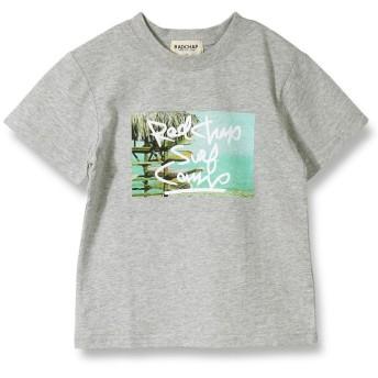 【25%OFF】 ブランシェス 写真プリント半袖Tシャツ(90~140cm) レディース 杢グレー 110cm 【branshes】 【セール開催中】