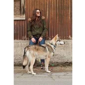 WOLFGANG MAN & BEAST / ウルフギャング・マン / StreetArt / COLLAR カラー L / 首輪 大型犬用