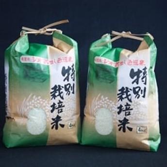 【先行受付 令和元年産米】大分県産ヒノヒカリ(白米)「ジオ蔵出し色選米」4kg×2袋