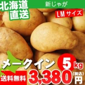 今季出荷開始! 新じゃがいも 送料無料 北海道産 じゃがいも メークイン【LMサイズ】1箱5キロ入り / 5kg 5キロ 5キロ ジャガイモ いも