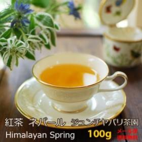 紅茶 ネパール 2019年 春摘み ジュンチヤバリ茶園 Himalayan Spring 100g お徳用パック 送料無料