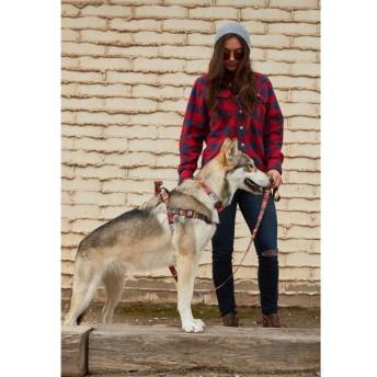 WOLFGANG MAN & BEAST / ウルフギャング・マン / Antigua / HARNESS ハーネス L /大型犬用
