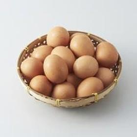 岩田のおいしい卵厳選大玉50個 (10個入り×5パック)