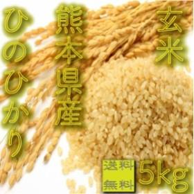 一部地域 送料無料 玄米 30年産 九州 熊本県産 ひのひかり 5kg ヒノヒカリ brown rice くまもとのお米 big_dr