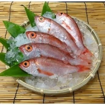 日本海産ノドグロ 5尾