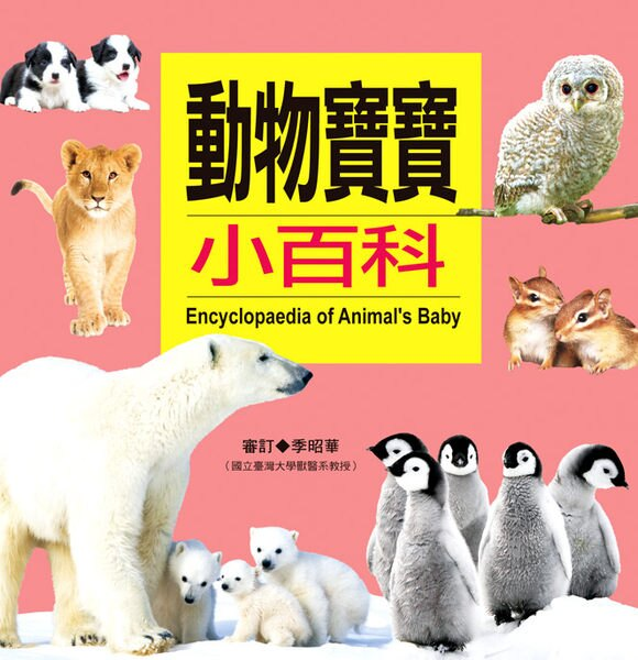 【人類文化】動物寶寶小百科