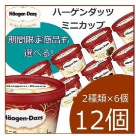 ハーゲンダッツ アイスクリーム ミニカップ 16種類から2種類選べる12個(6個×2種類)セット