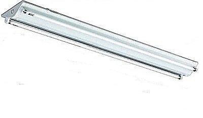 東亞/T5 2尺 雙管 山型燈具 日光燈具 吸頂燈 附燈管 白光/黃光 〖永光照明〗TO-FS-14243SEA