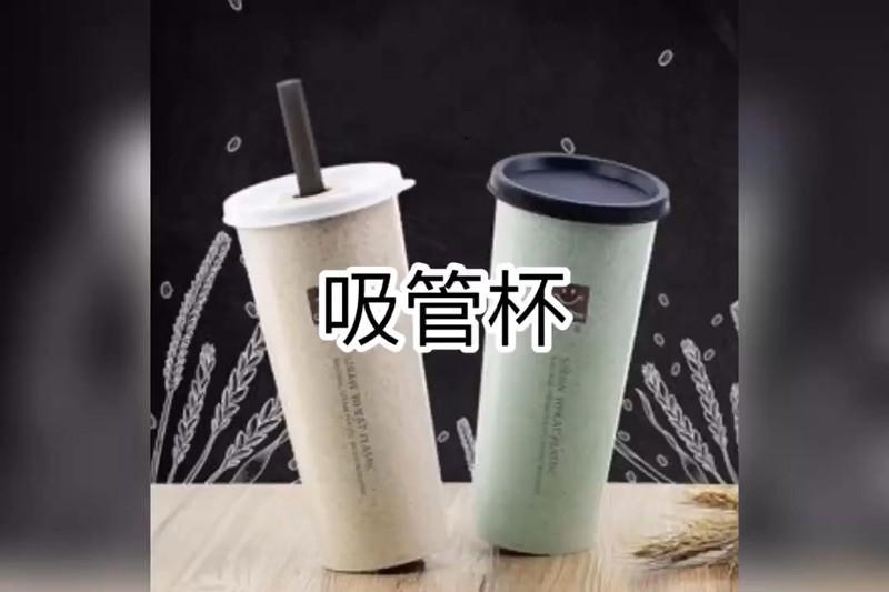 小麥桿環保系列 吸管杯 隨行杯 珍珠奶茶 大吸管 環保杯