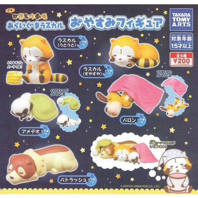 全套5款【日本正版】小浣熊 睡眠公仔 扭蛋 轉蛋 公仔 拉斯卡爾 TAKARA TOMY - 871337