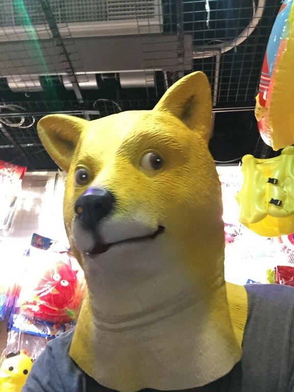 東區派對-萬聖節面具/動物面具/搞笑面具/秋田面具/秋田頭套