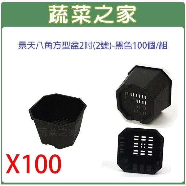 【蔬菜之家】景天八角方型盆-黑色100個/組-共有4款尺寸可選-2吋(2號)、2.5吋(3號)、3.5吋(4號)、4.5吋(5號)