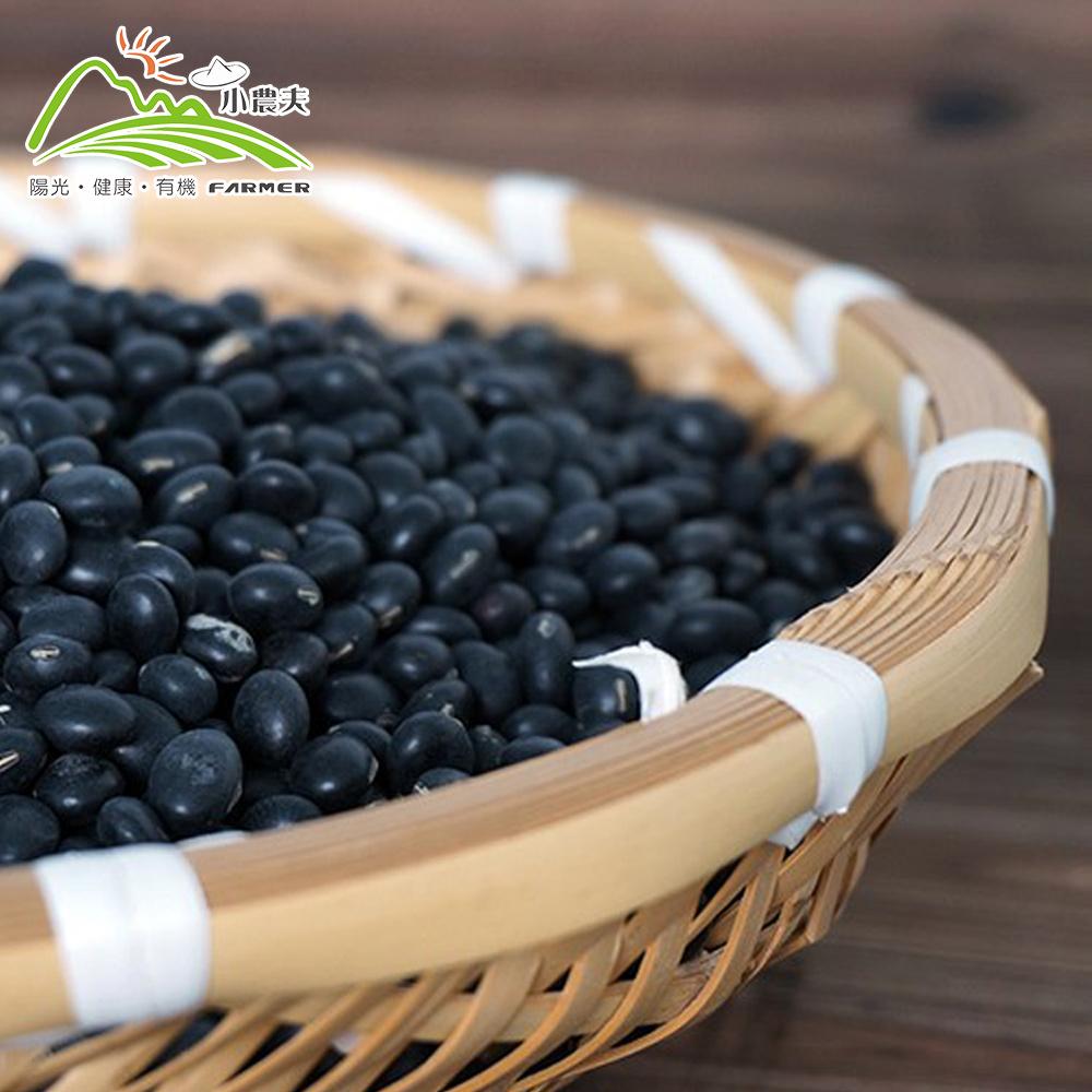 小農夫 台南3號-國產青仁黑豆3包組(500g/包)