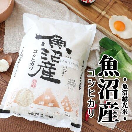 日本 新潟縣 魚沼越光米 產地認證 2KG 日本米 越光米 米 米飯 壽司 飯糰【N600582】
