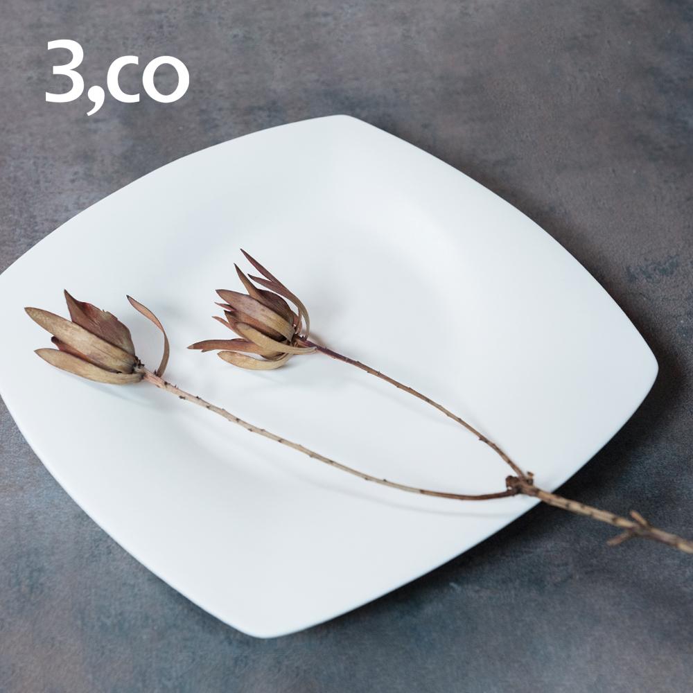 【3,co】海洋四方盤(大) - 白