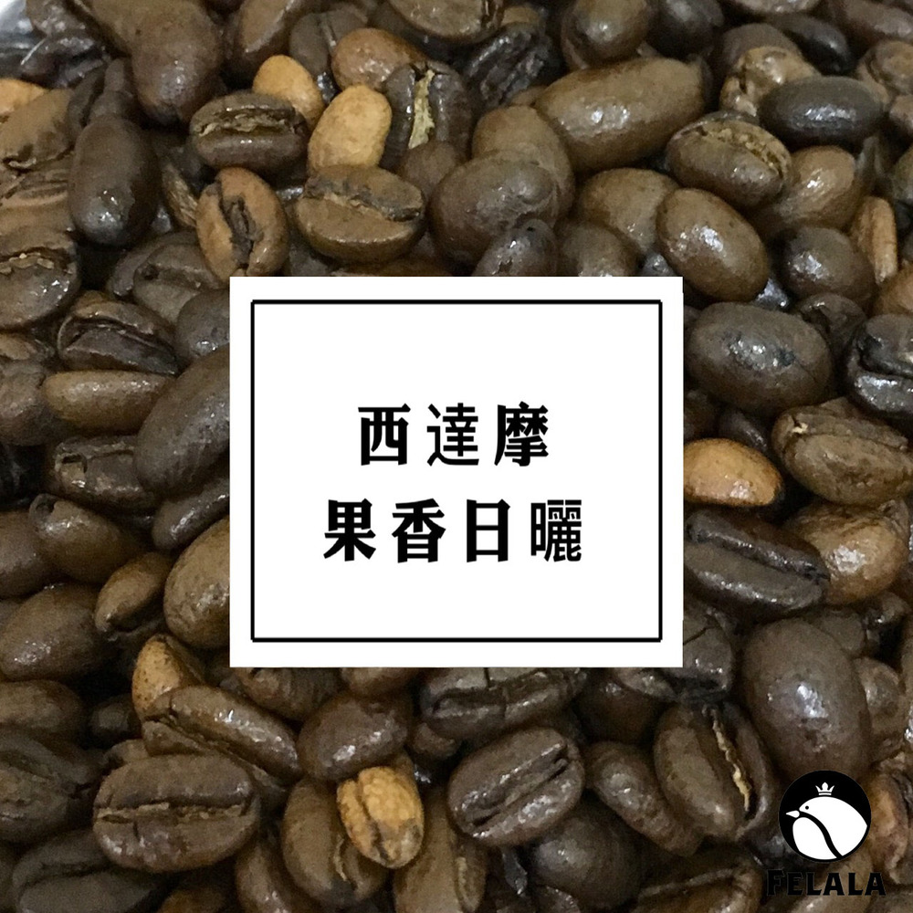 【費拉拉咖啡】西達摩 果香日曬 咖啡豆 一磅(限時送耳掛X1)