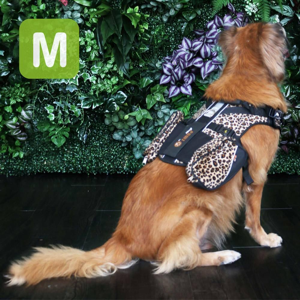 crazypaws 瘋狂爪子 時尚豹紋護胸M號-寵物外出兩件式胸背帶/護胸 (寵物護胸/寵物項圈)