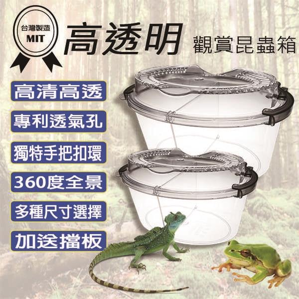 besthot高透明觀賞昆蟲寵物箱 迷你型 - 台灣專利設計 (加送擋板)