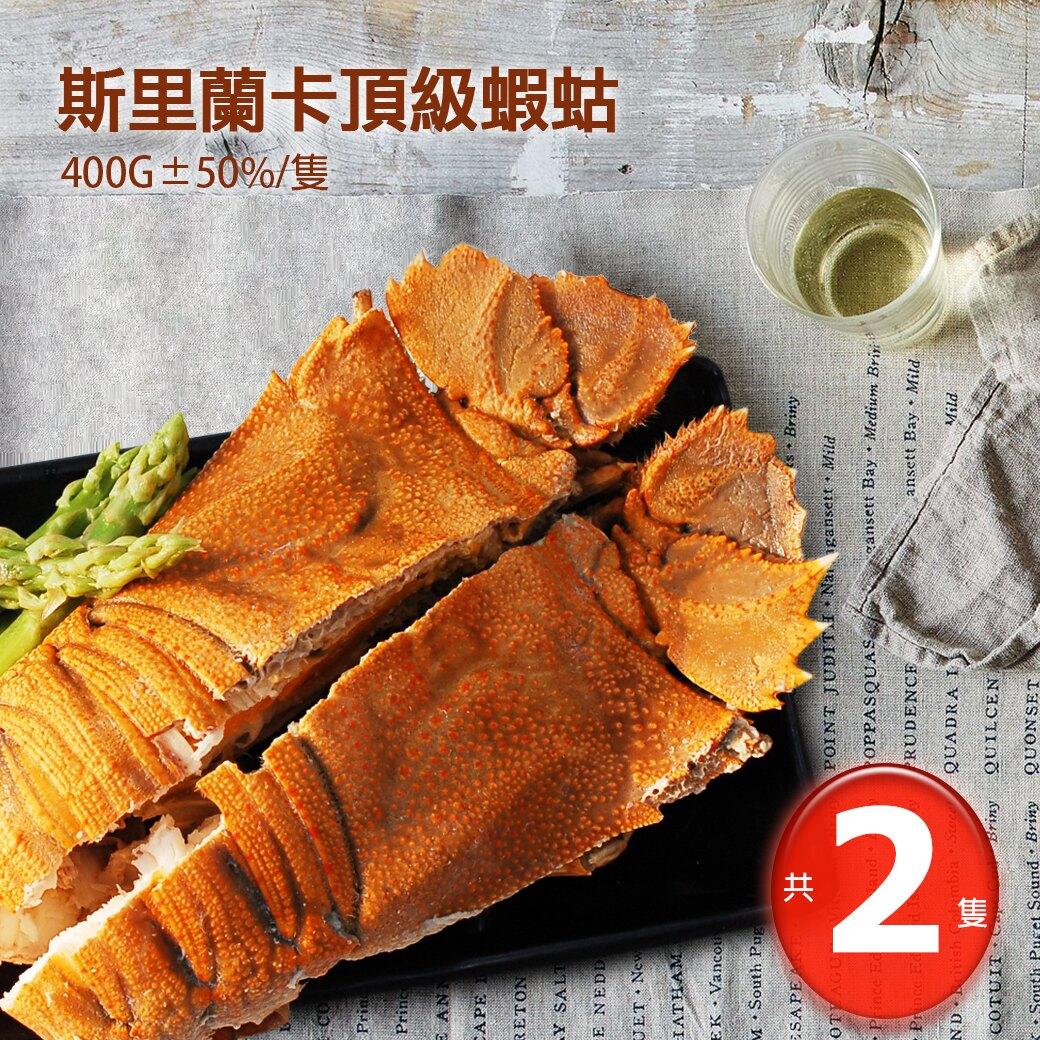 【築地一番鮮】巨無霸斯里蘭卡頂級蝦蛄2隻(400G/隻)免運組