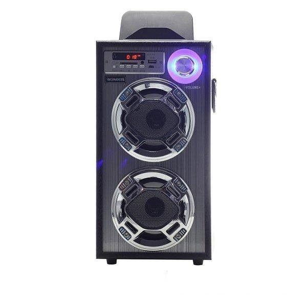 ◤具2組麥克風插座◢ WONDER 旺德 卡拉OK歡樂唱 USB/SD/MP3/FM 隨身音響 WS-P001   **可刷卡!免運費**