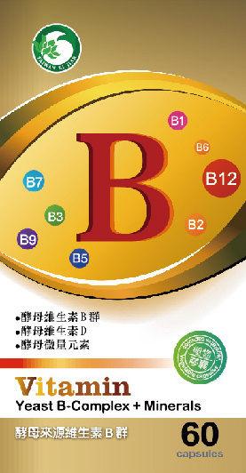 啤酒酵母 維生素B群
