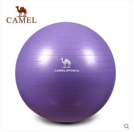 駱駝運動瑜伽球 健美瘦身平衡彈力防爆球大尺寸75cm(身高165-175cm)