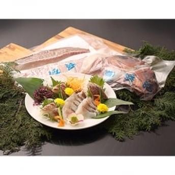 真鯛1匹柵どり済みで刺身・焼物・煮物に扱いやすさ抜群!【よか鯛バイ約1.2kg】!