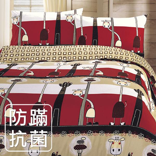 【鴻宇HONGYEW】美國棉/防蹣抗菌寢具/台灣製/雙人床包組-136203
