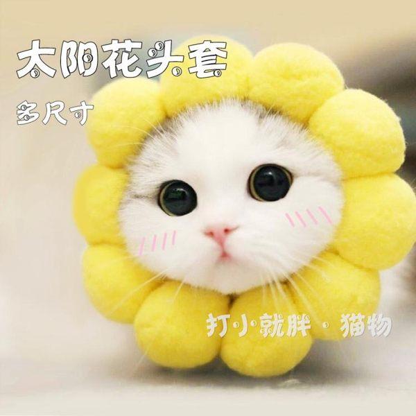 寵物頭套貓咪頭套搞笑裝飾帽防咬保暖可愛獅子帽生日變裝帽貓頭飾寵物貓帽 全網最低價