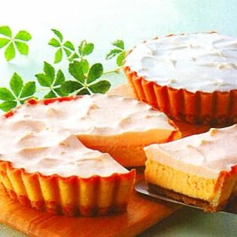 季節限定 ふらの雪どけチーズケーキ 北海道メロン味【凍】ベイクド・レア・チーズケーキ リッチな味わい お礼 お返し 贈り物 ギフト
