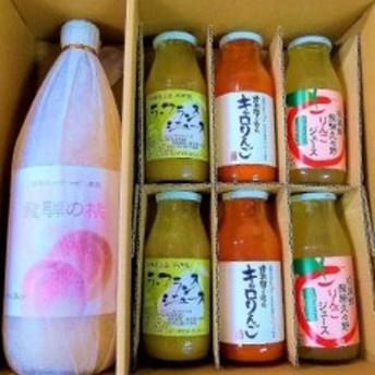 飛騨高山フルーツジュースセレクション