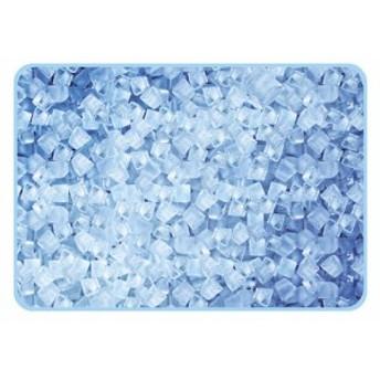 パール金属 ピクチャーレジャーシート D-2341 氷