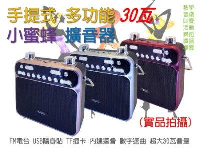 艾琳電音~30瓦 手提音響 擴音器大聲公 內建 4000mAh FM電台 USB隨身碟 TF卡 MP3播放 可接電腦