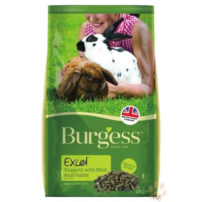 Burgess伯爵 高機能兔飼料-成兔2kg 2入(效期2021/07/28)