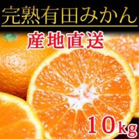 たっぷり完熟有田みかん 10kg 【魚鶴商店】◆◆
