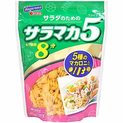 Hagoromo 哈格綜合造型麵8分(160g)