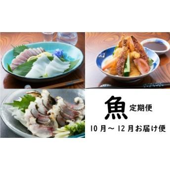 初音の定期便!!魚コース【10月、11月、12月お届け】(定期便『魚』コース)