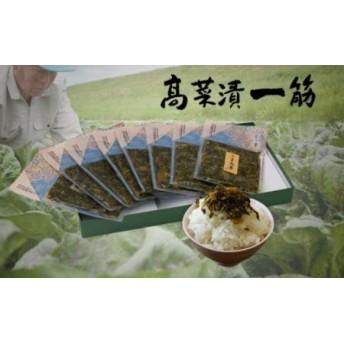 高菜乃華 8個入りセット 高菜漬一筋-前田食品工業