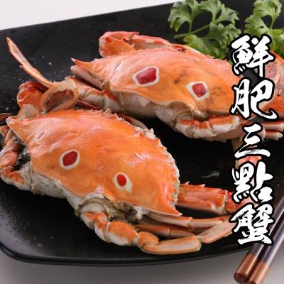 海鮮王 精選鮮肥三點蟹 *12隻(淨重100-150g/隻 )