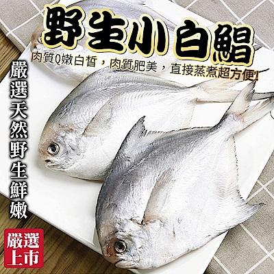【海陸管家】嚴選野生天然鮮嫩小白鯧8包(每包3-5隻/共約300g)
