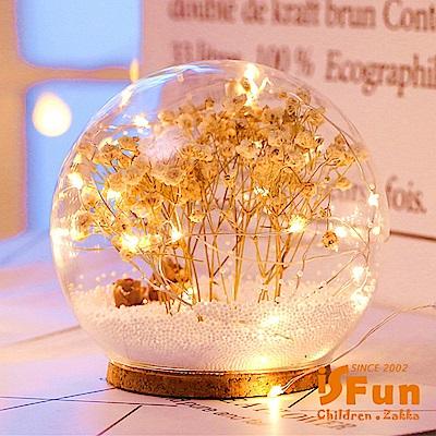 iSFun 夢幻水晶球 聖誕雪花情境玻璃球燈 白乾燥花