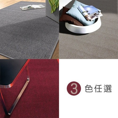 范登伯格 - 浮華 經典素面地毯 (三色可選) (105x156cm)