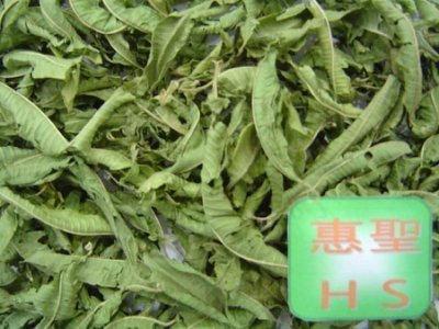 HS惠聖,迷迭香150克+馬鞭草150克+檸檬草150克=420元(免運費)