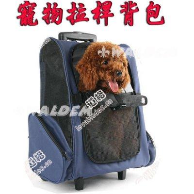 【葳爾登】寵物旅行箱可背透氣寵物推車寵物拉桿背包貓狗推車寵物背包外出提籠26047藍色